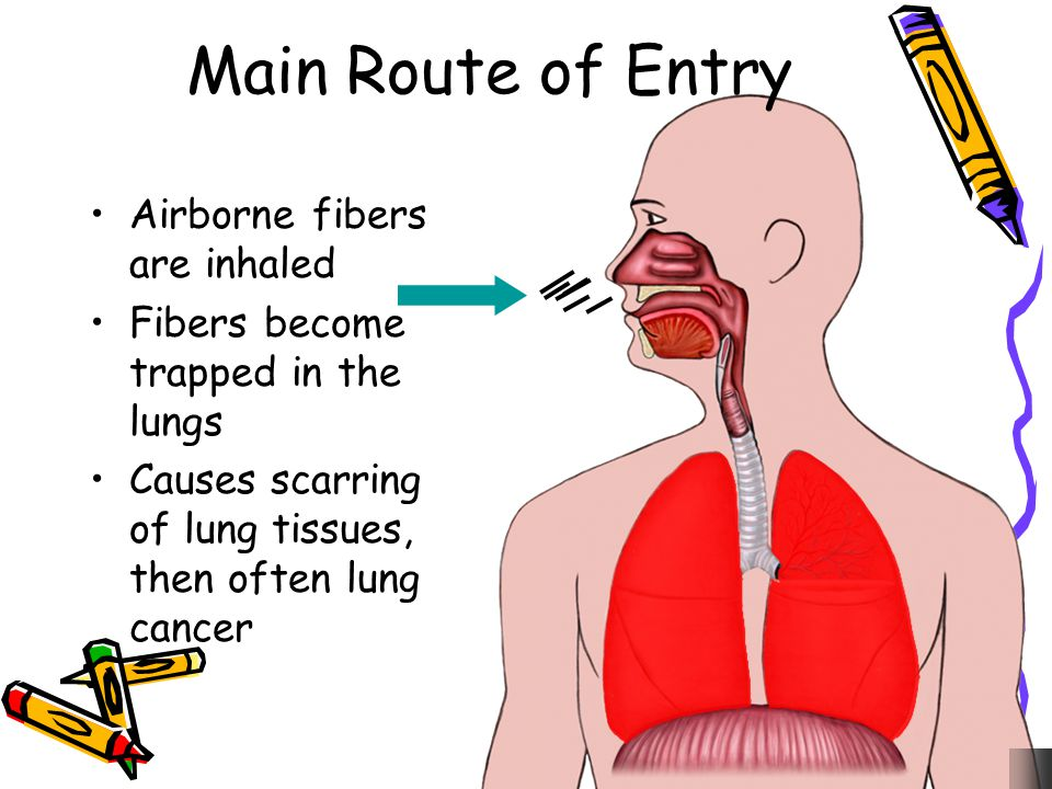 Main Route of Entry Airborne fibers are inhaled