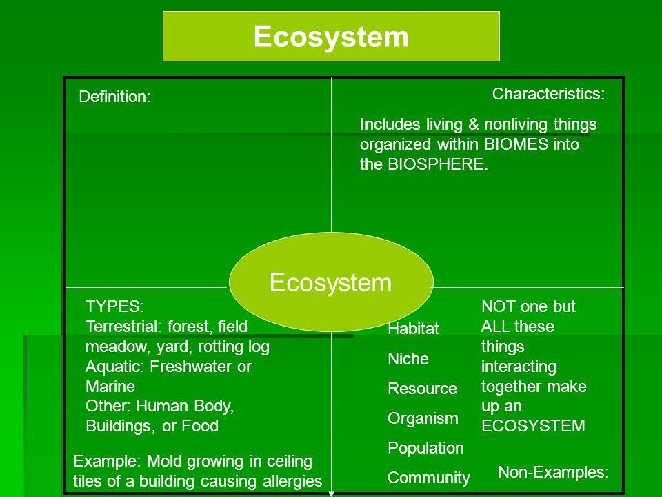 Ecosystem Ecosystem Definition: Characteristics: