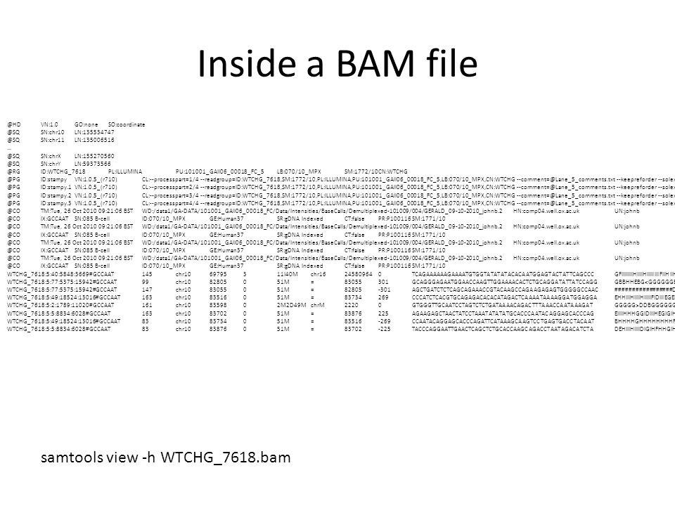 Inside a BAM file samtools view -h WTCHG_7618.bam