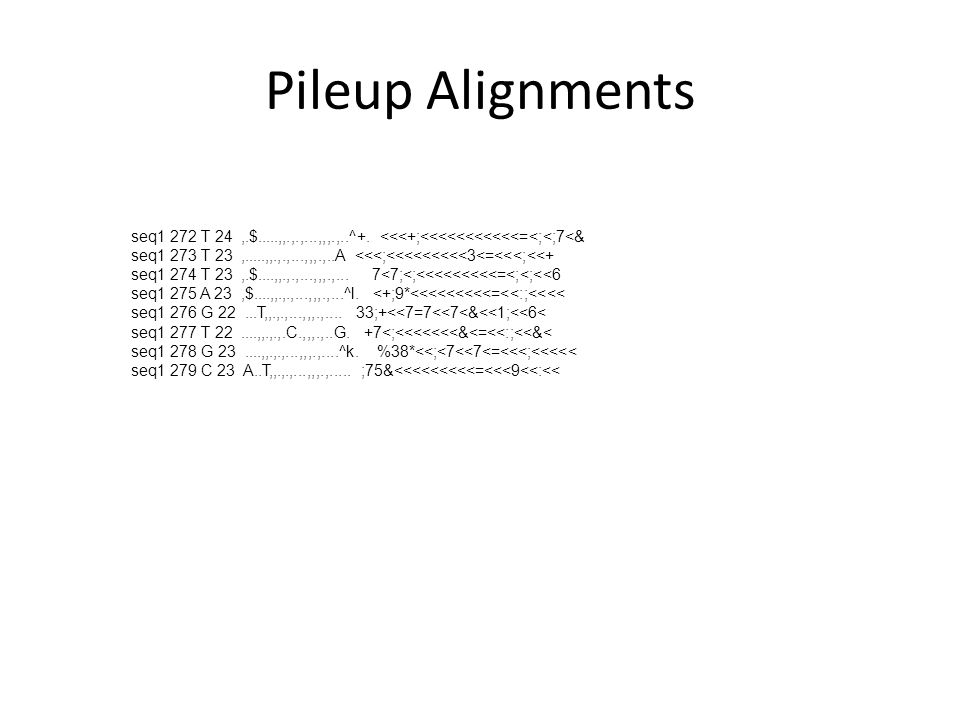 Pileup Alignments seq1 272 T 24 ,.$.....,,.,.,...,,,.,..^+. <<<+;<<<<<<<<<<<=<;<;7<& seq1 273 T 23 ,.....,,.,.,...,,,.,..A <<<;<<<<<<<<<3<=<<<;<<+