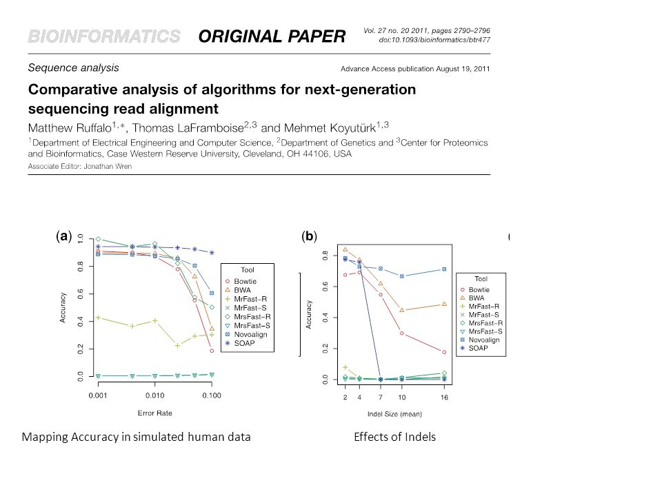 Mapping Accuracy in simulated human data