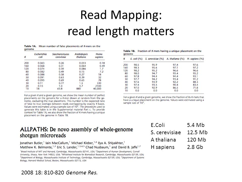 Read Mapping: read length matters