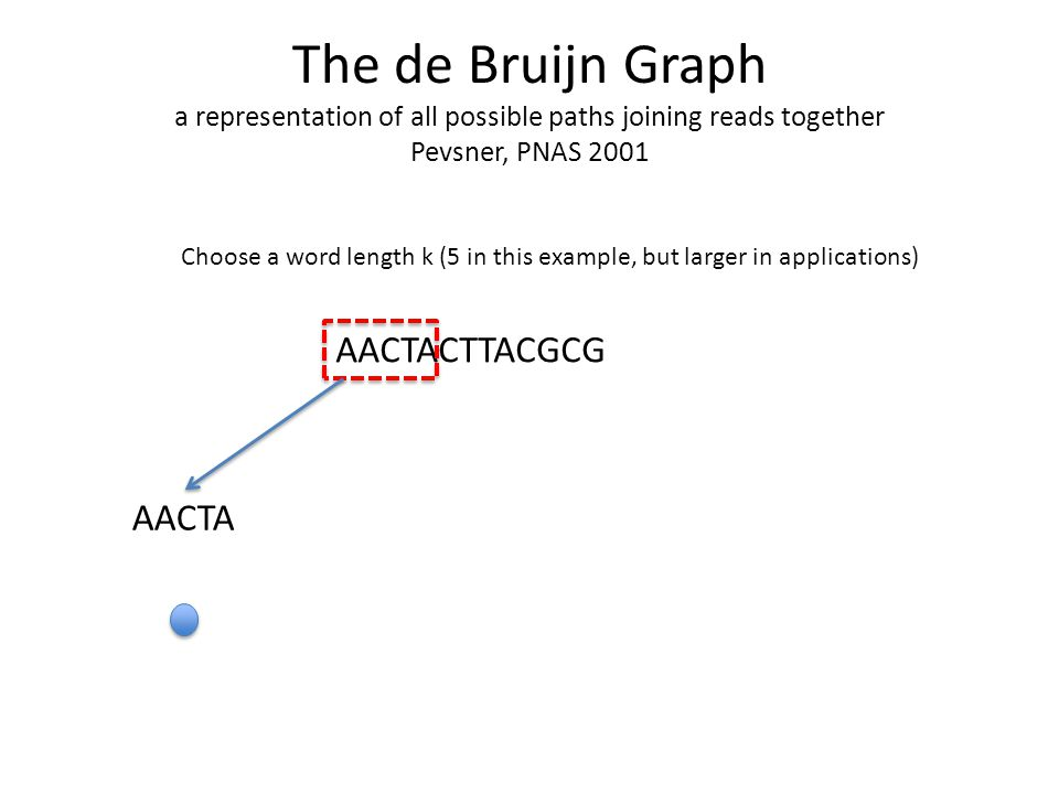 The de Bruijn Graph a representation of all possible paths joining reads together Pevsner, PNAS 2001