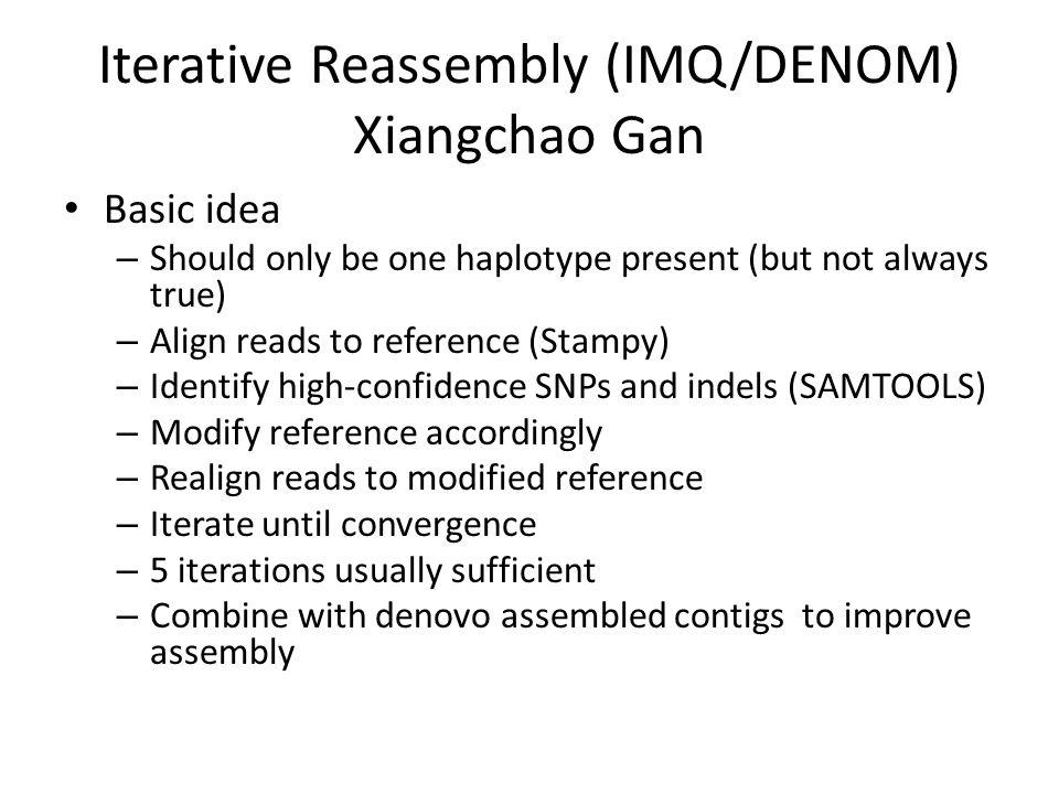 Iterative Reassembly (IMQ/DENOM) Xiangchao Gan