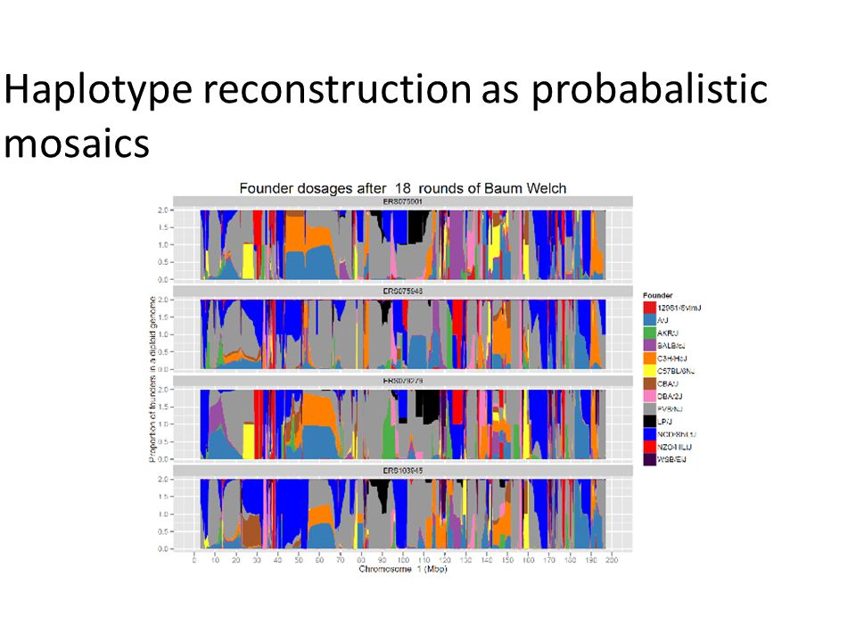 Haplotype reconstruction as probabalistic mosaics
