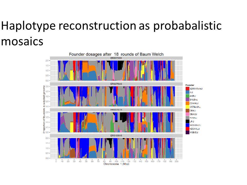 Haplotype reconstruction as probabalistic mosaics