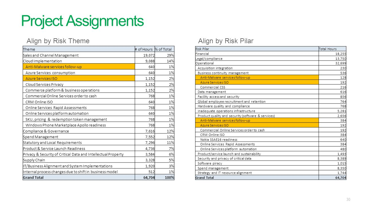 Project Assignments Align by Risk Theme Align by Risk Pilar Theme