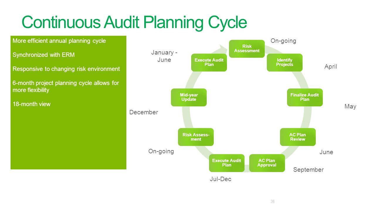 Continuous Audit Planning Cycle