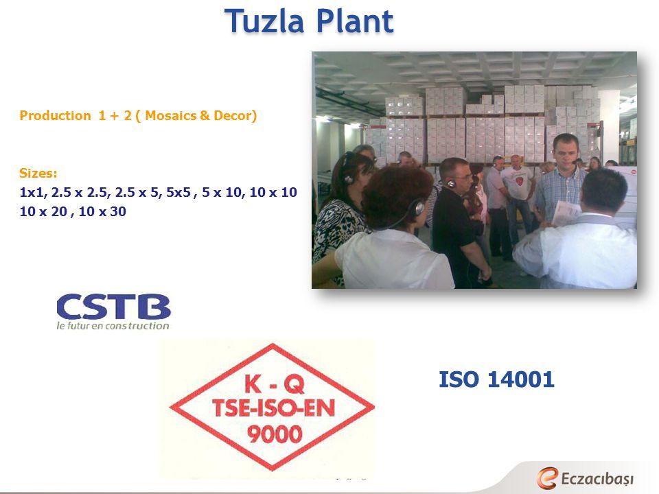 Tuzla Plant ISO 14001 Production 1 + 2 ( Mosaics & Decor) Sizes:
