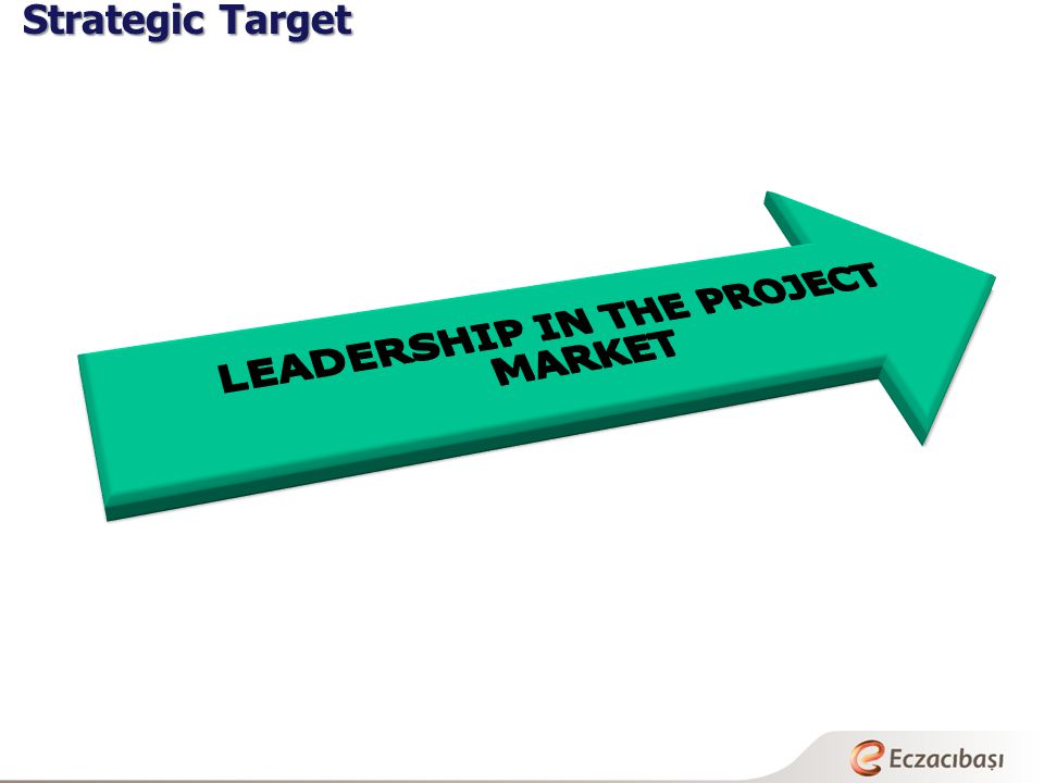 LEADERSHIP IN THE PROJECT MARKET