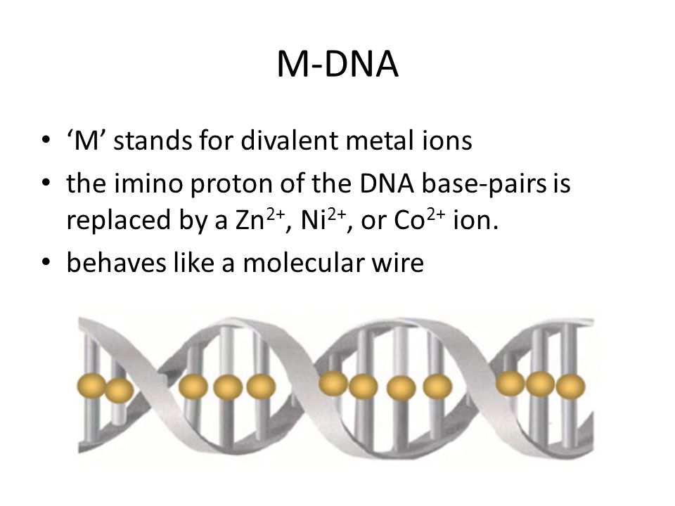 M-DNA 'M' stands for divalent metal ions