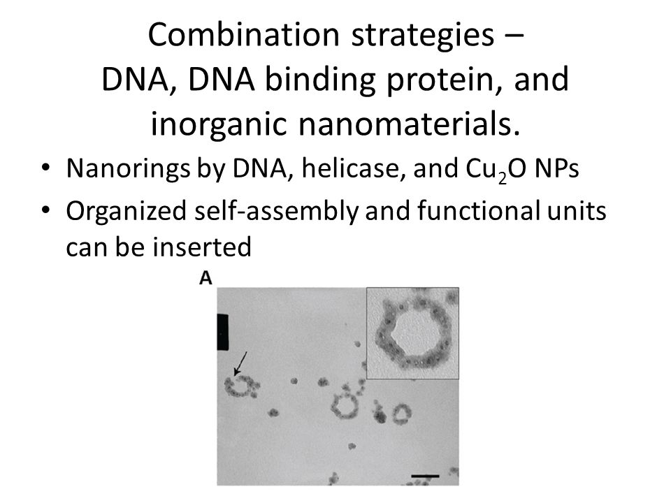 Combination strategies – DNA, DNA binding protein, and inorganic nanomaterials.