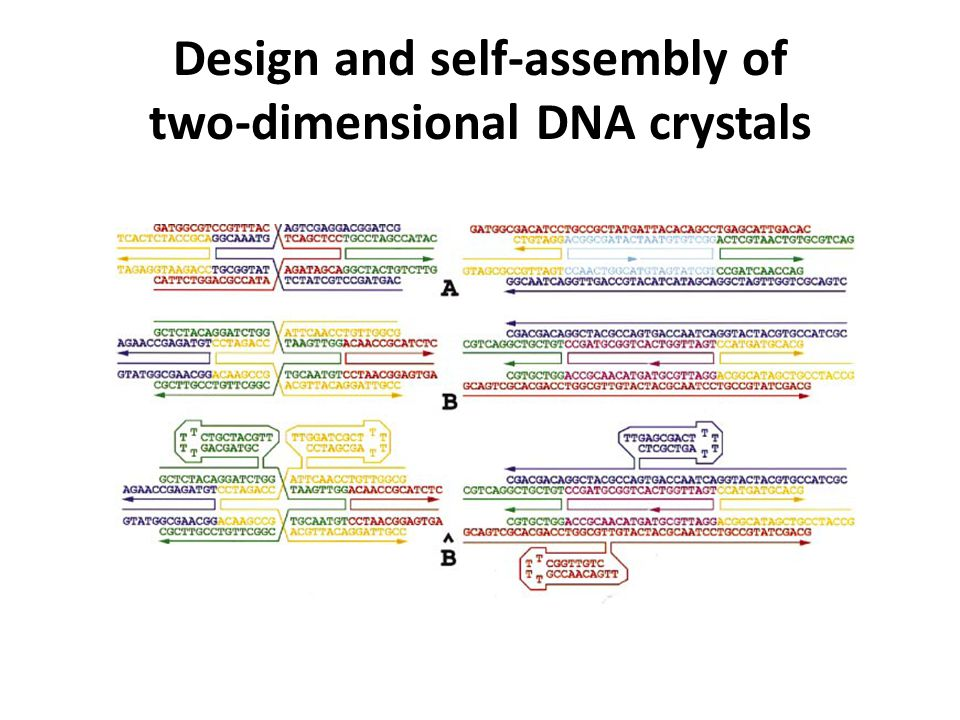 Design and self-assembly of two-dimensional DNA crystals