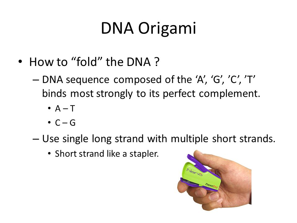 DNA Origami How to fold the DNA