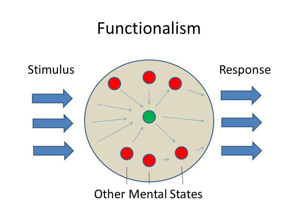 Functionalism Stimulus Response Other Mental States