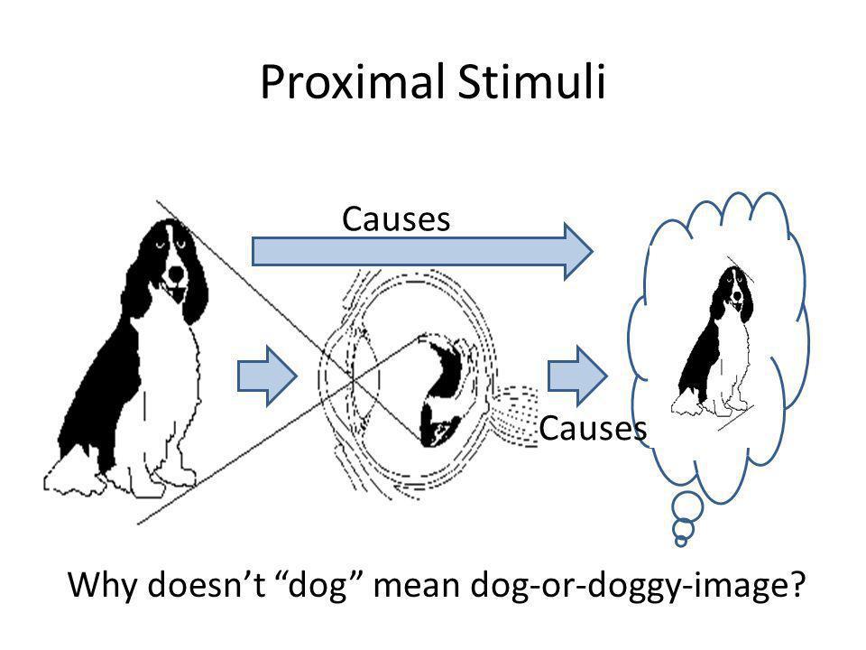 Proximal Stimuli Causes Causes