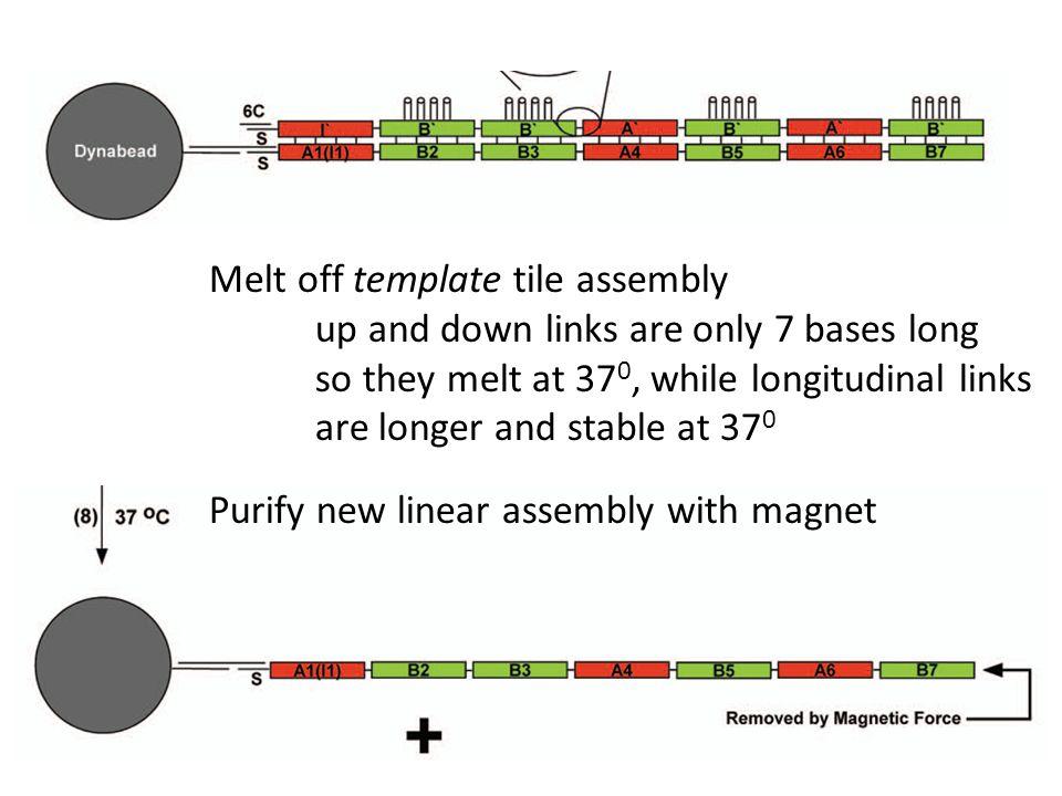 Melt off template tile assembly