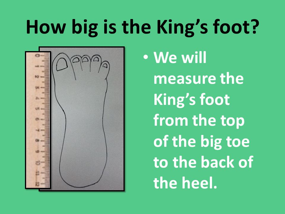 How big is the King's foot