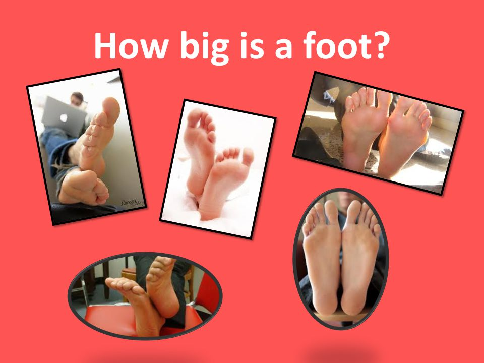 How big is a foot Ask the students, How big is a foot Have a general discussion or turn & talk.
