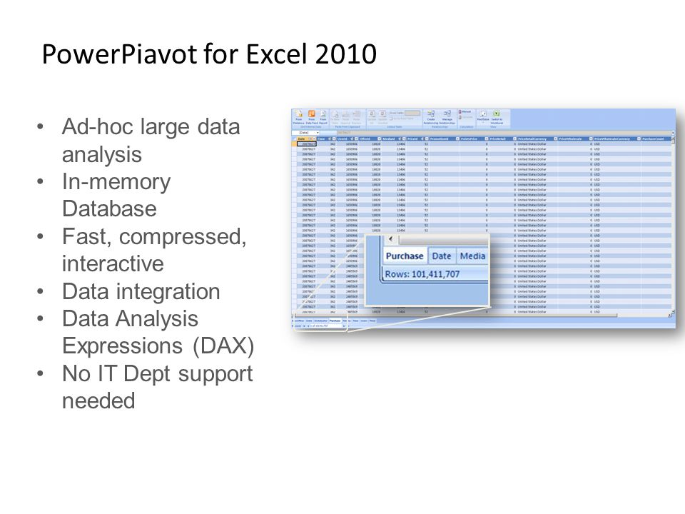 PowerPiavot for Excel 2010 Ad-hoc large data analysis