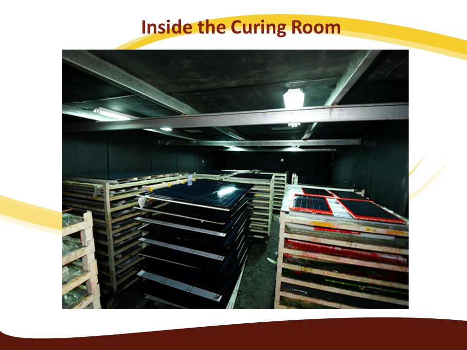 Inside the Curing Room Inside the Curing room