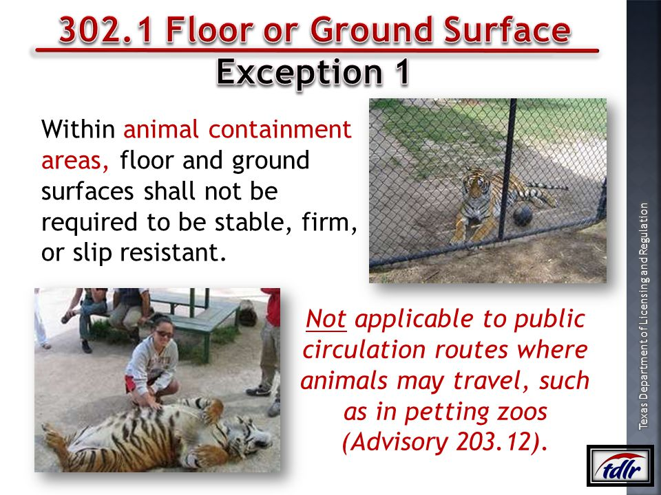 302.1 Floor or Ground Surface
