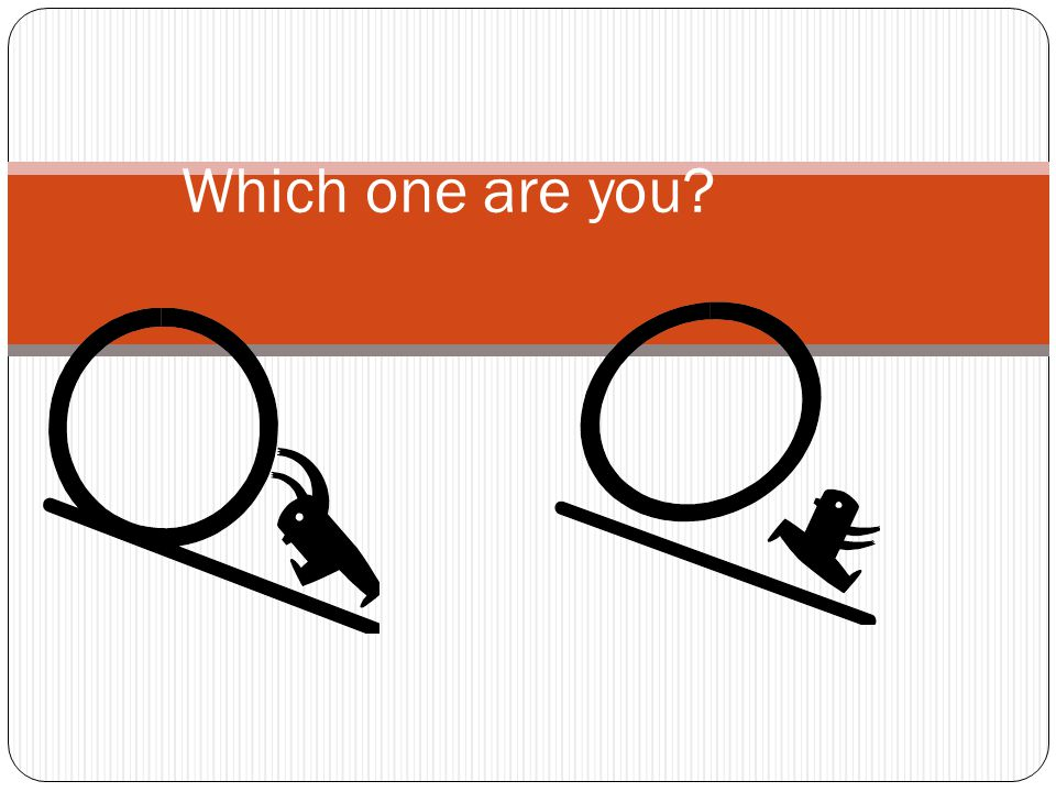 Which one are you What do these images mean to you Share with your shoulder partner. Discuss/Share out: