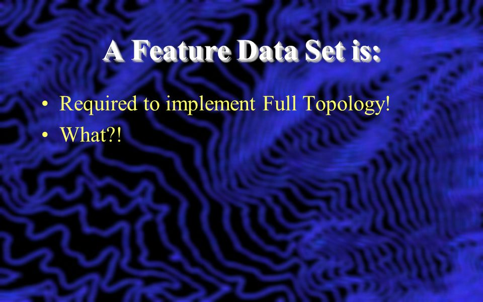 A Feature Data Set is: Required to implement Full Topology! What !