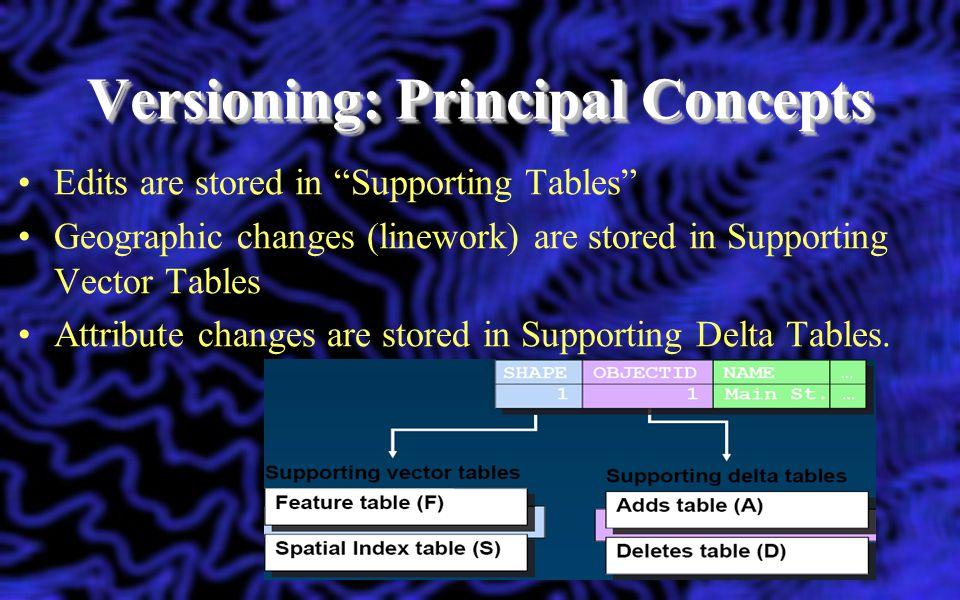 Versioning: Principal Concepts
