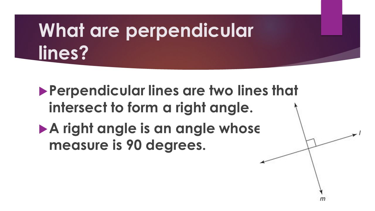 What are perpendicular lines