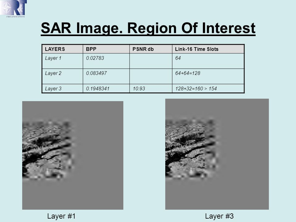 SAR Image. Region Of Interest