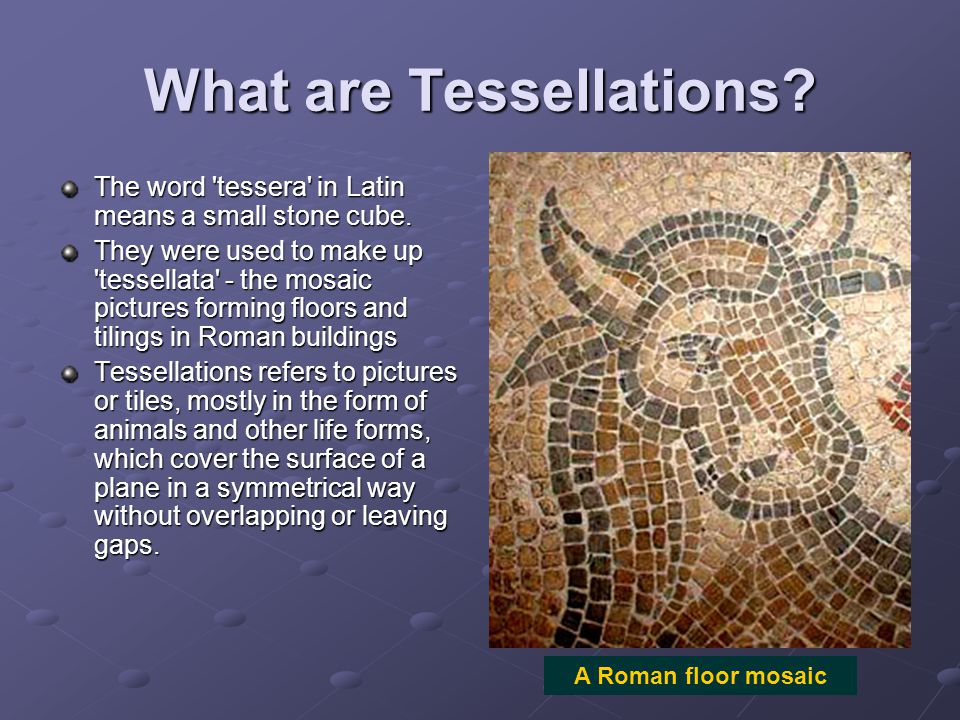What are Tessellations