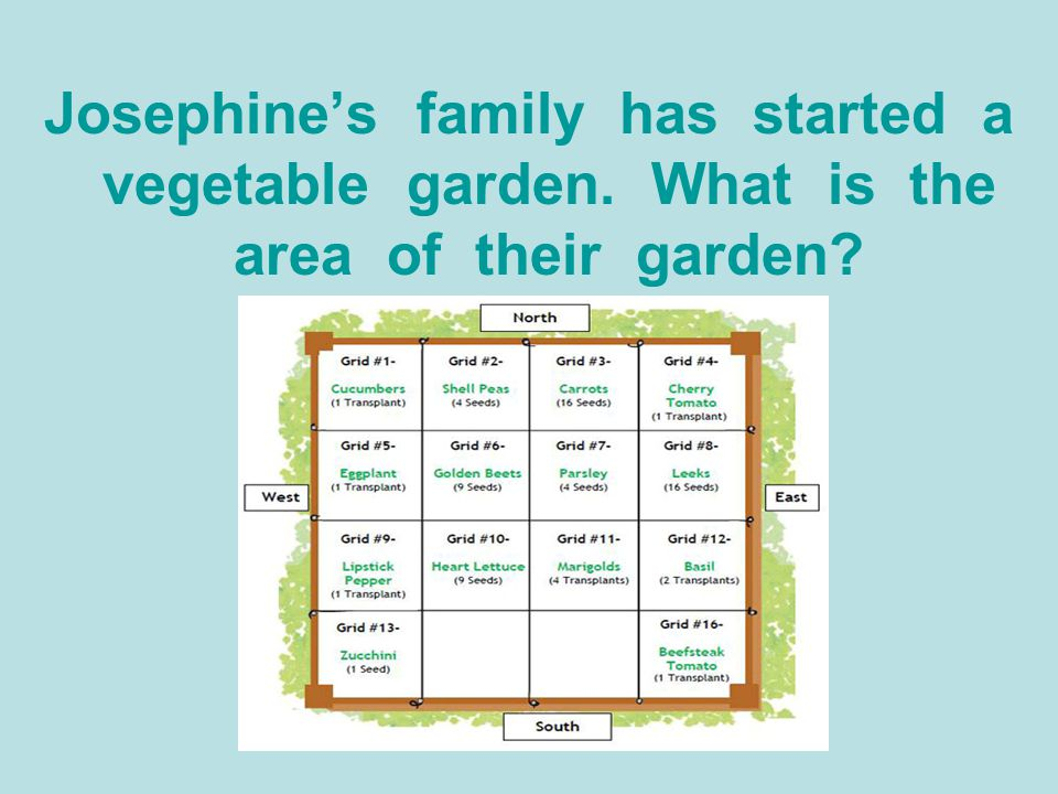 Josephine's family has started a vegetable garden