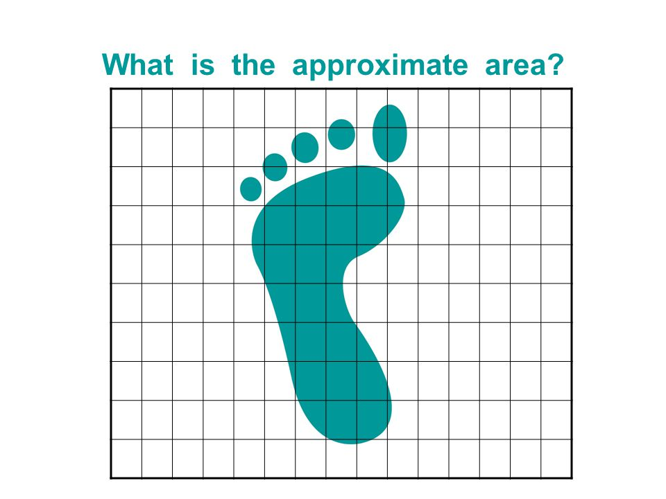 What is the approximate area