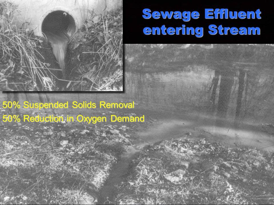 Sewage Effluent entering Stream