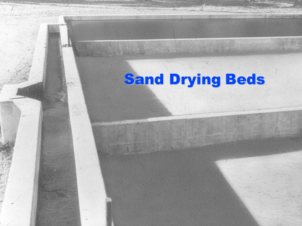 Sand Drying Beds