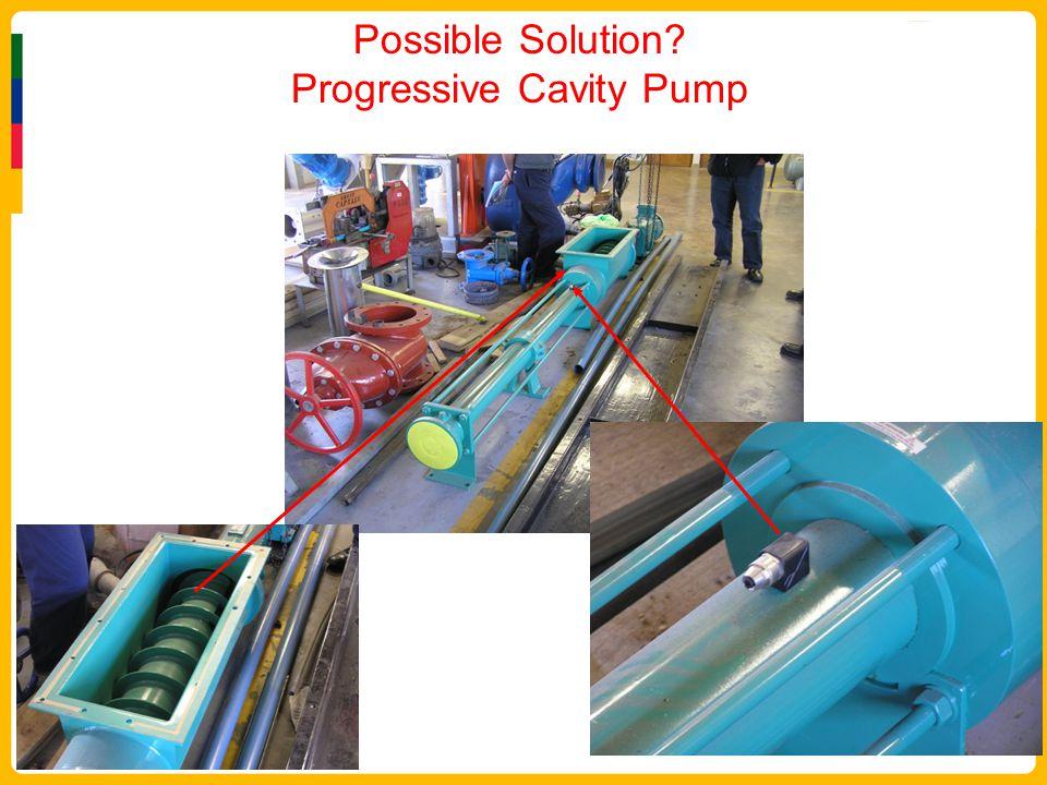 Possible Solution Progressive Cavity Pump