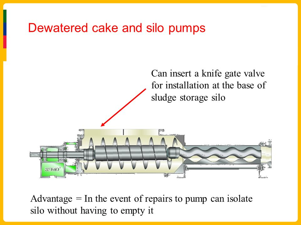Dewatered cake and silo pumps