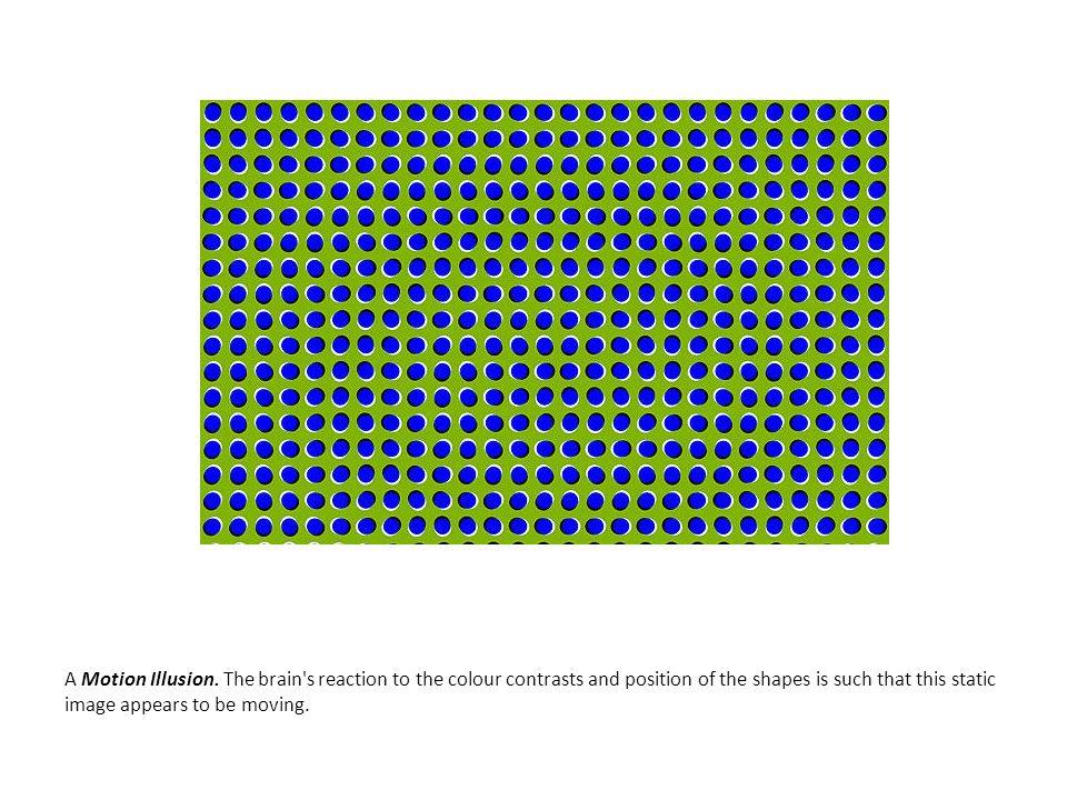 A Motion Illusion.