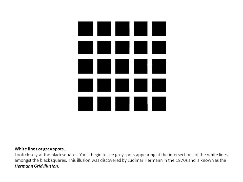 White lines or grey spots. Look closely at the black squares