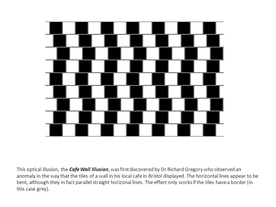 This optical illusion, the Cafe Wall Illusion, was first discovered by Dr Richard Gregory who observed an anomaly in the way that the tiles of a wall in his local cafe in Bristol displayed.