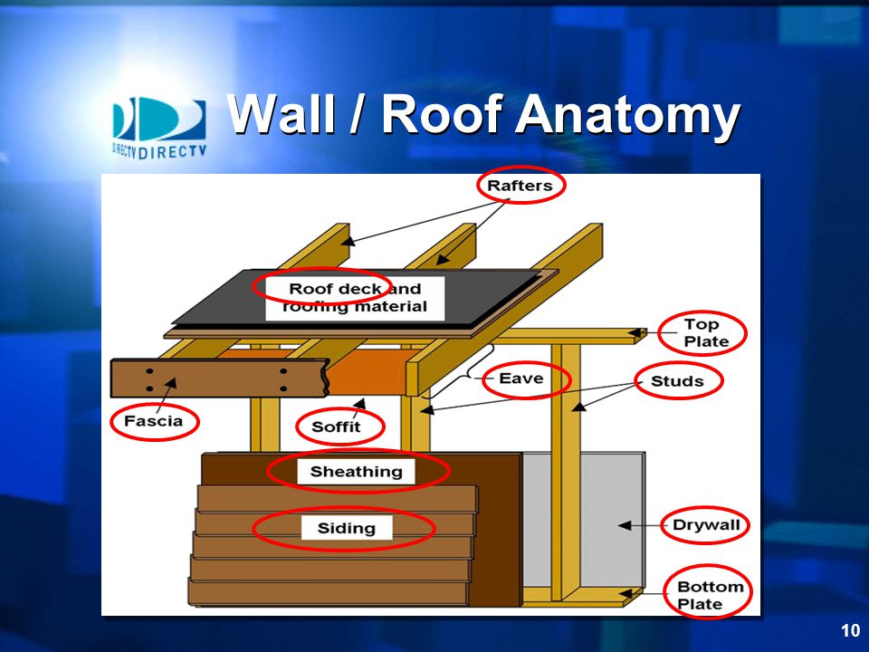 Wall / Roof Anatomy