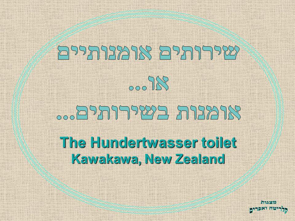 The Hundertwasser toilet