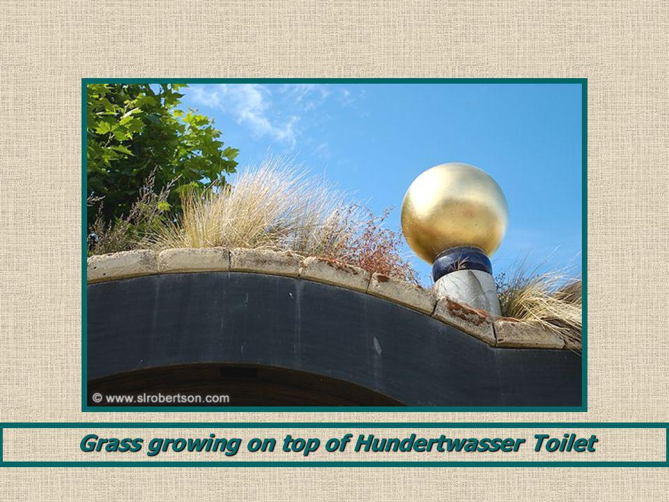 Grass growing on top of Hundertwasser Toilet