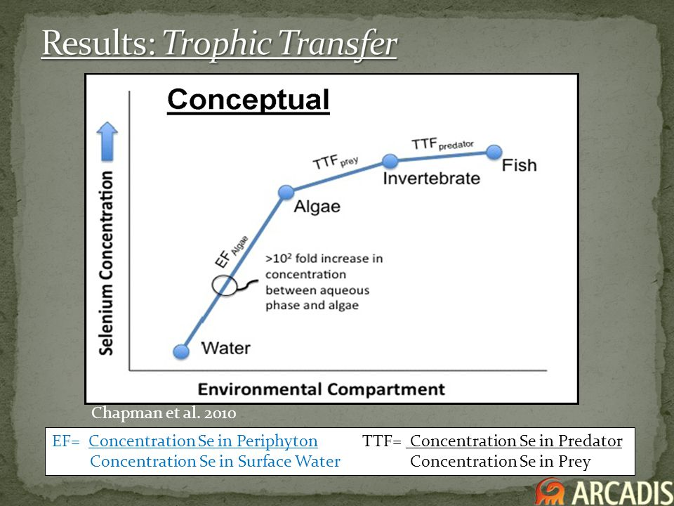 Results: Trophic Transfer