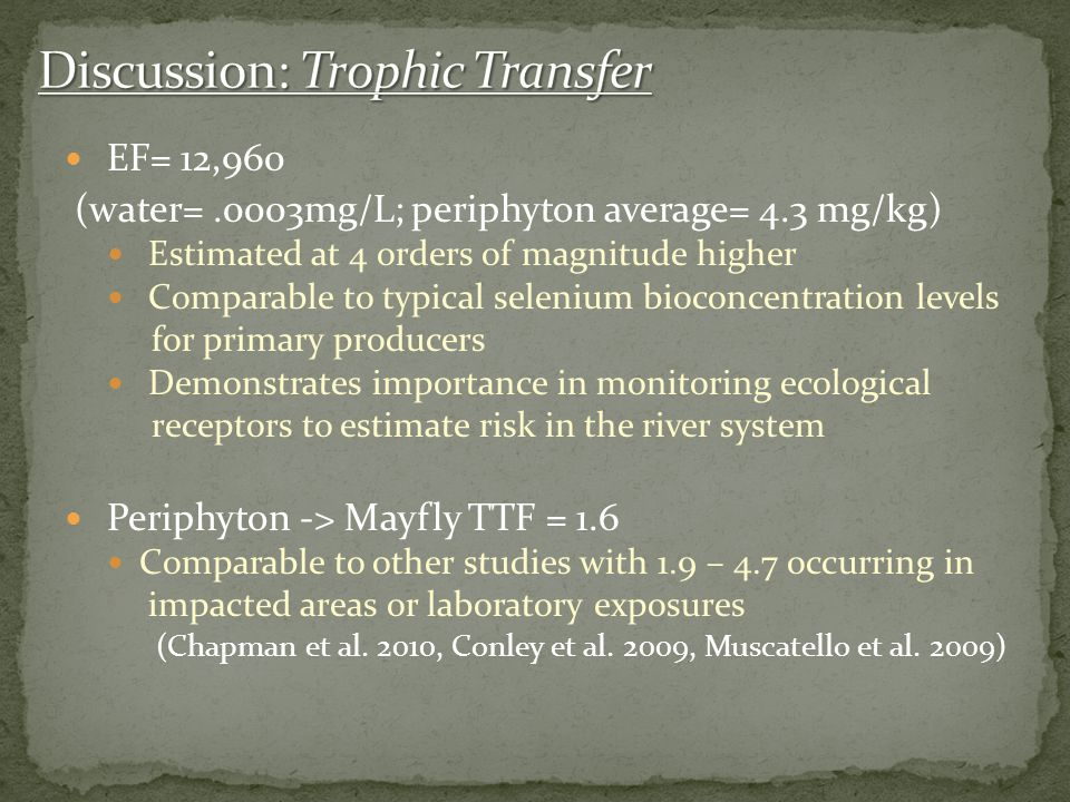 Discussion: Trophic Transfer