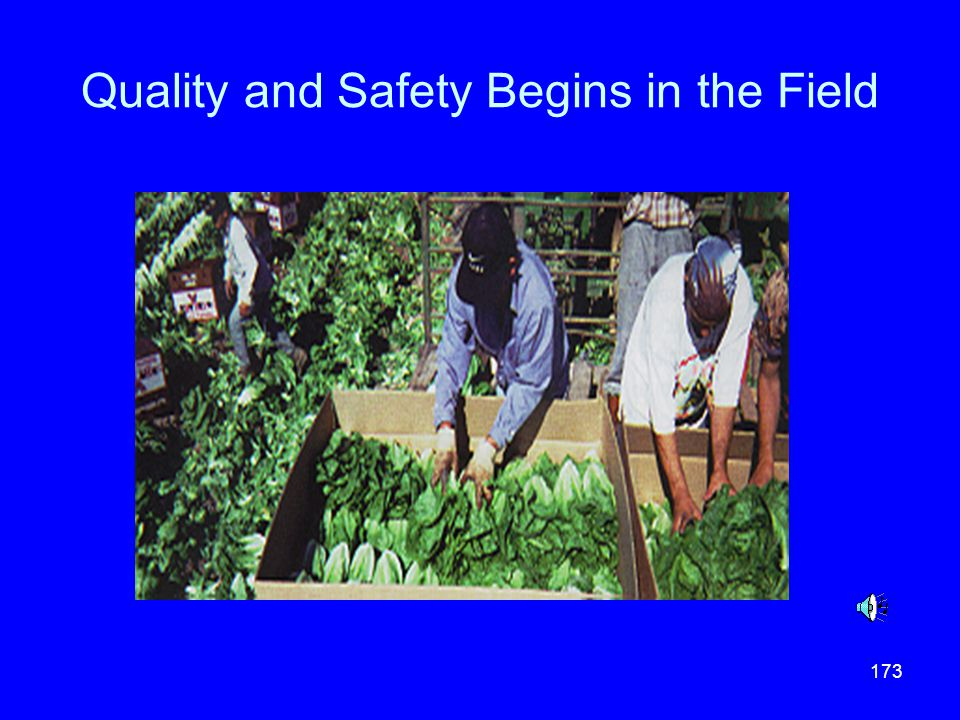 Quality and Safety Begins in the Field