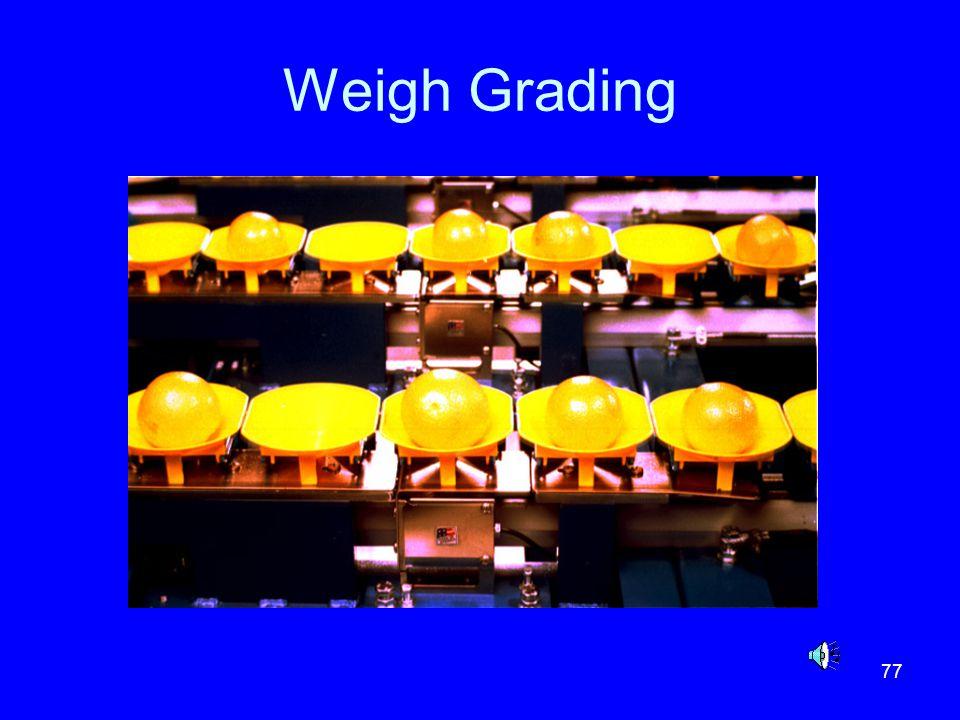 Weigh Grading