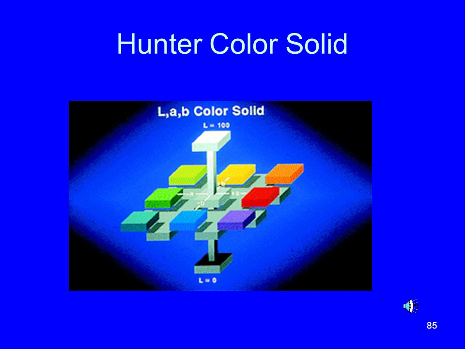 Hunter Color Solid