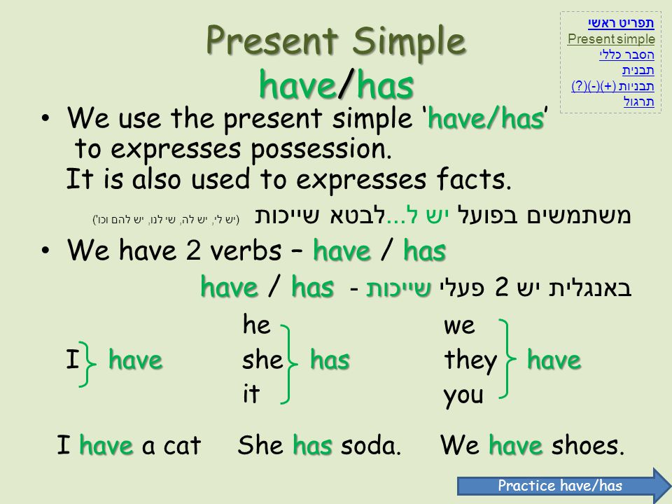 Present Simple have/has